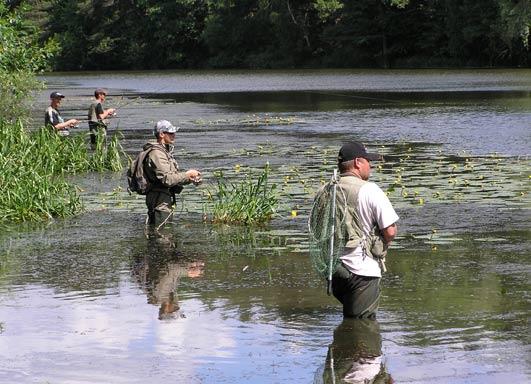 http://fishing.vn.ua/karp/Protokoli/chu2008sp_b/r.jpg